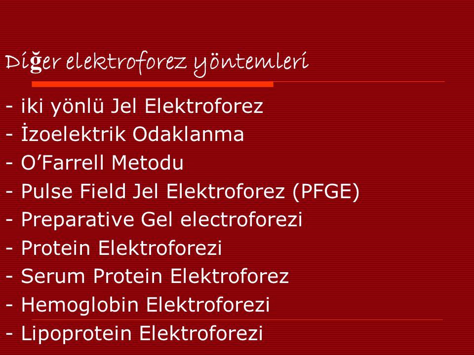 Di ğ er elektroforez yöntemleri - iki yönlü Jel Elektroforez - İzoelektrik Odaklanma - O'Farrell Metodu - Pulse Field Jel Elektroforez (PFGE) - Preparative Gel electroforezi - Protein Elektroforezi - Serum Protein Elektroforez - Hemoglobin Elektroforezi - Lipoprotein Elektroforezi
