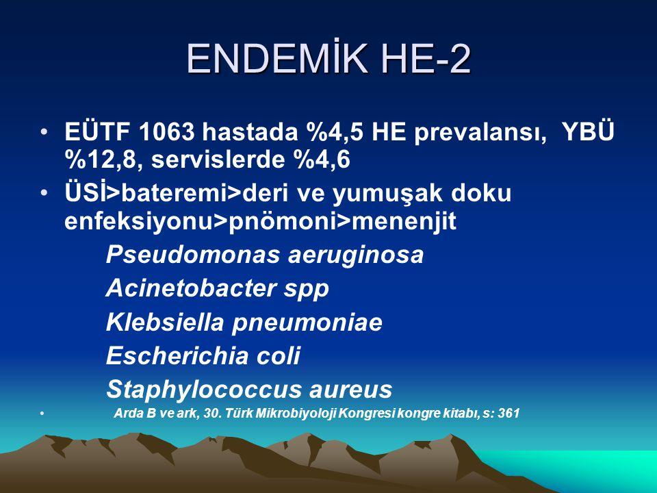 ENDEMİK HE-2 EÜTF 1063 hastada %4,5 HE prevalansı, YBÜ %12,8, servislerde %4,6 ÜSİ>bateremi>deri ve yumuşak doku enfeksiyonu>pnömoni>menenjit Pseudomonas aeruginosa Acinetobacter spp Klebsiella pneumoniae Escherichia coli Staphylococcus aureus Arda B ve ark, 30.