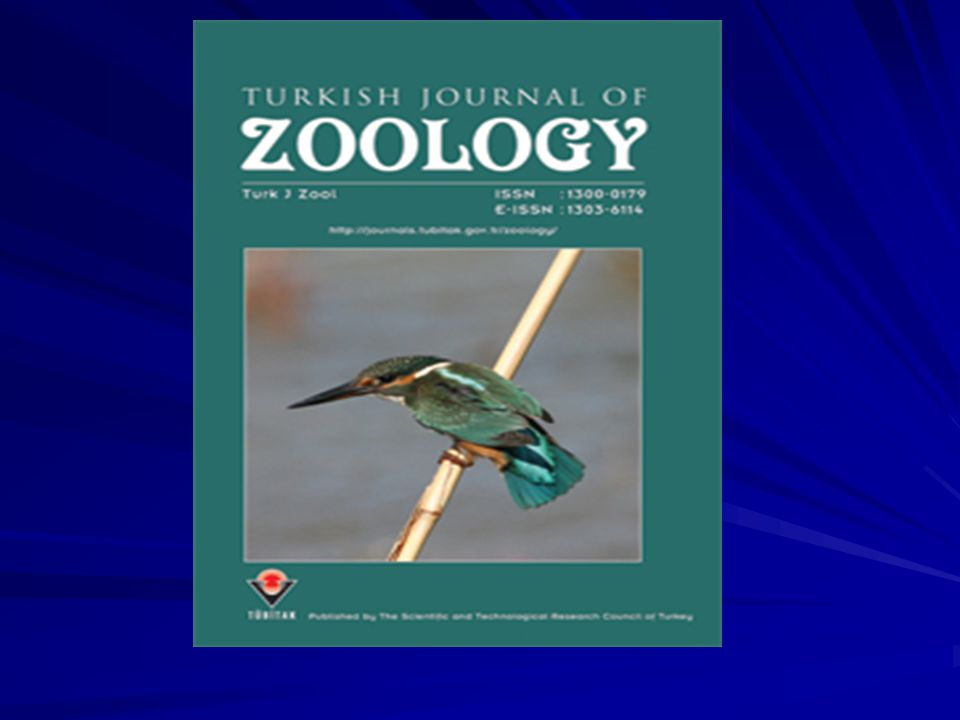 Başvurudan Sonra Yapılan İşlemler ISI editörü dergideki gelişmelerle ilgili bilgilendirildi ISI editörü Turk J Zool ve Türkiye'deki bilimsel gelişmeler hakkında bilgilendirildi Her basılan sayıdan üç adet kargo ile Thomson ISI'ya ulaştırıldı Başvuru: 23 Kasım 2007 Kabul: 10 Mayıs 2008