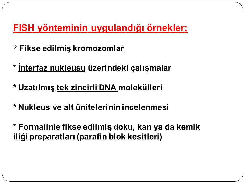 FISH yönteminin uygulandığı örnekler; * Fikse edilmiş kromozomlar * İnterfaz nukleusu üzerindeki çalışmalar * Uzatılmış tek zincirli DNA molekülleri *