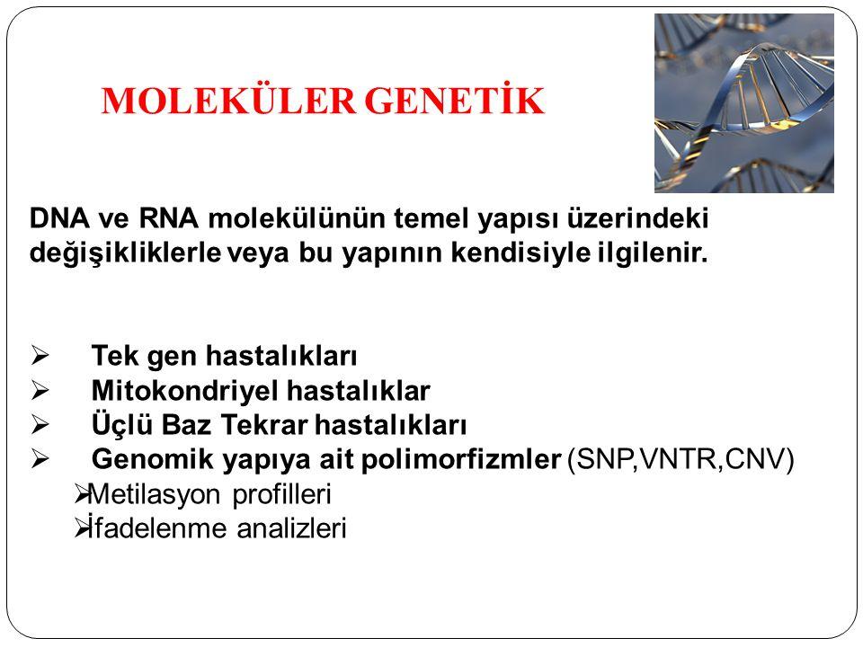DNA ve RNA molekülünün temel yapısı üzerindeki değişikliklerle veya bu yapının kendisiyle ilgilenir.