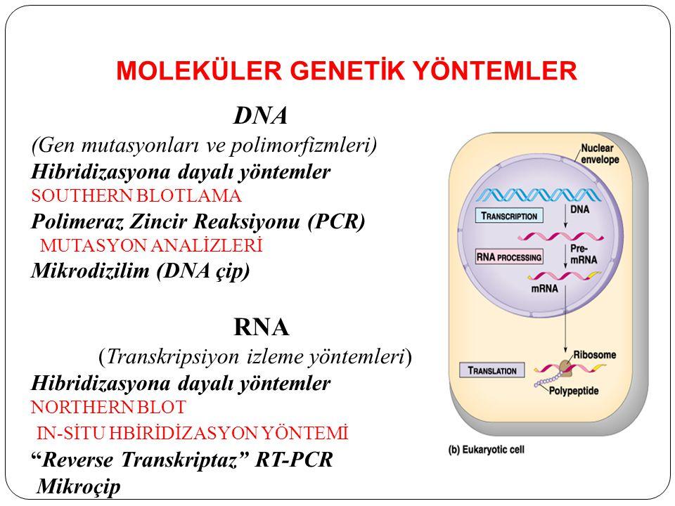 MOLEKÜLER GENETİK YÖNTEMLER DNA (Gen mutasyonları ve polimorfizmleri) Hibridizasyona dayalı yöntemler SOUTHERN BLOTLAMA Polimeraz Zincir Reaksiyonu (PCR) MUTASYON ANALİZLERİ Mikrodizilim (DNA çip) RNA (Transkripsiyon izleme yöntemleri) Hibridizasyona dayalı yöntemler NORTHERN BLOT IN-SİTU HBİRİDİZASYON YÖNTEMİ Reverse Transkriptaz RT-PCR Mikroçip