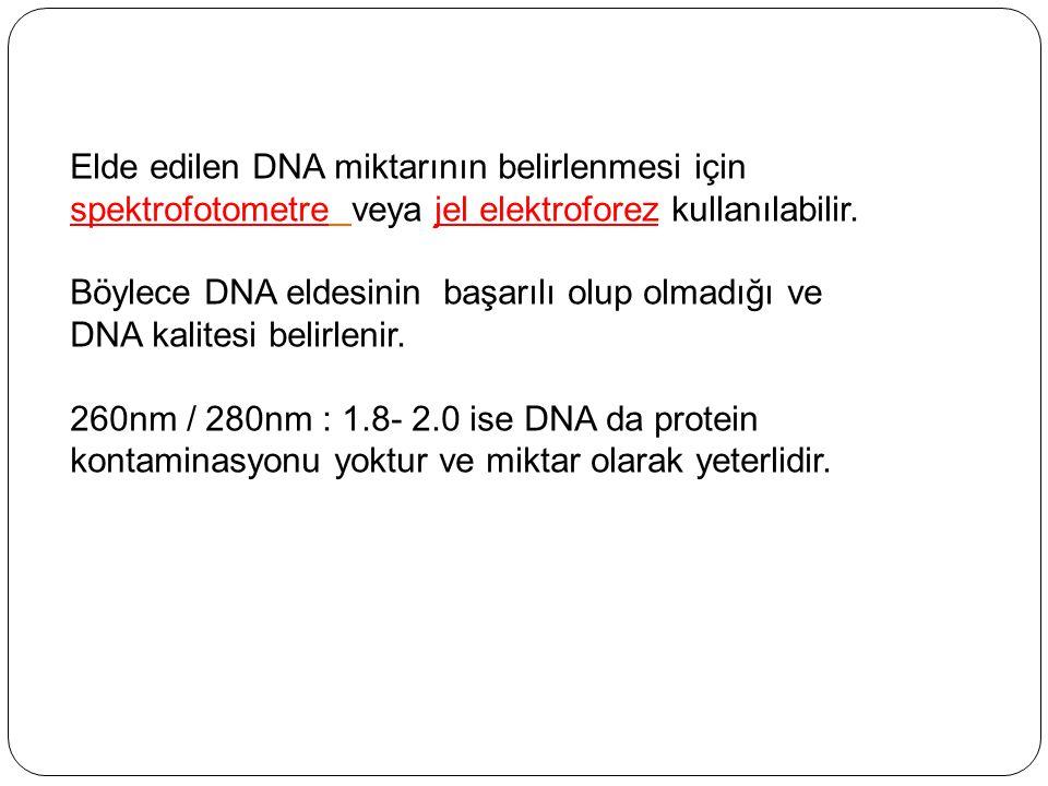 Elde edilen DNA miktarının belirlenmesi için spektrofotometre veya jel elektroforez kullanılabilir.