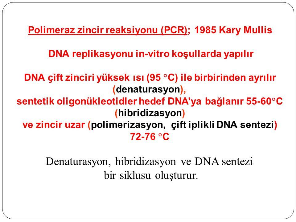 Polimeraz zincir reaksiyonu (PCR); 1985 Kary Mullis DNA replikasyonu in-vitro koşullarda yapılır DNA çift zinciri yüksek ısı (95  C) ile birbirinden ayrılır (denaturasyon), sentetik oligonükleotidler hedef DNA'ya bağlanır 55-60  C (hibridizasyon) ve zincir uzar (polimerizasyon, çift iplikli DNA sentezi) 72-76  C Denaturasyon, hibridizasyon ve DNA sentezi bir siklusu oluşturur.