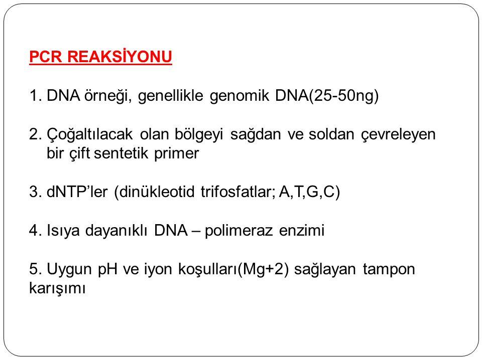 PCR REAKSİYONU 1. DNA örneği, genellikle genomik DNA(25-50ng) 2. Çoğaltılacak olan bölgeyi sağdan ve soldan çevreleyen bir çift sentetik primer 3. dNT