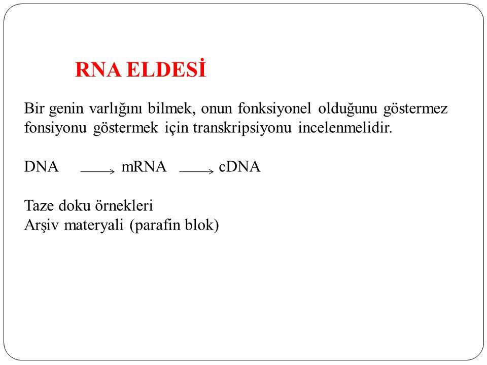 RNA ELDESİ Bir genin varlığını bilmek, onun fonksiyonel olduğunu göstermez fonsiyonu göstermek için transkripsiyonu incelenmelidir. DNAmRNAcDNA Taze d