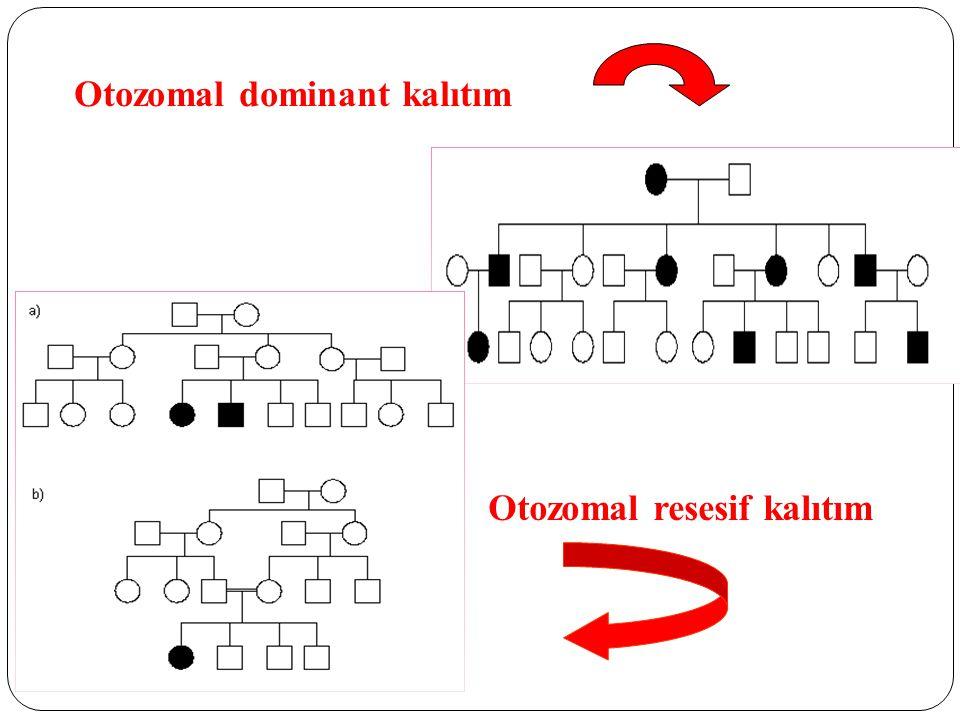 Otozomal dominant kalıtım Otozomal resesif kalıtım