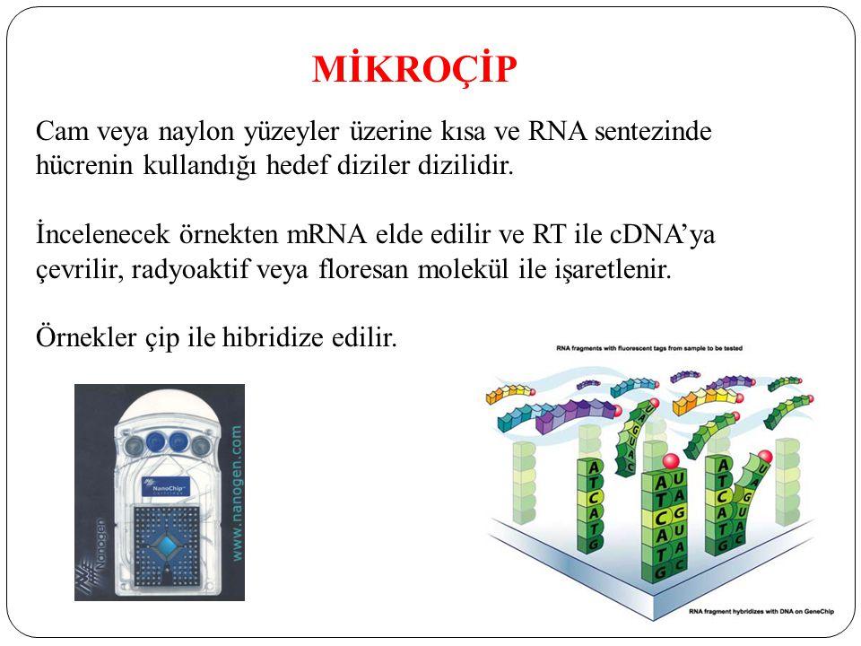 Cam veya naylon yüzeyler üzerine kısa ve RNA sentezinde hücrenin kullandığı hedef diziler dizilidir.