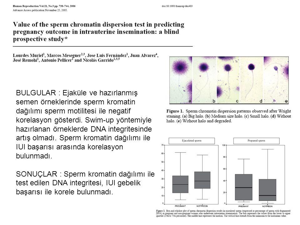 BULGULAR : Ejaküle ve hazırlanmış semen örneklerinde sperm kromatin dağılımı sperm motilitesi ile negatif korelasyon gösterdi. Swim-up yöntemiyle hazı