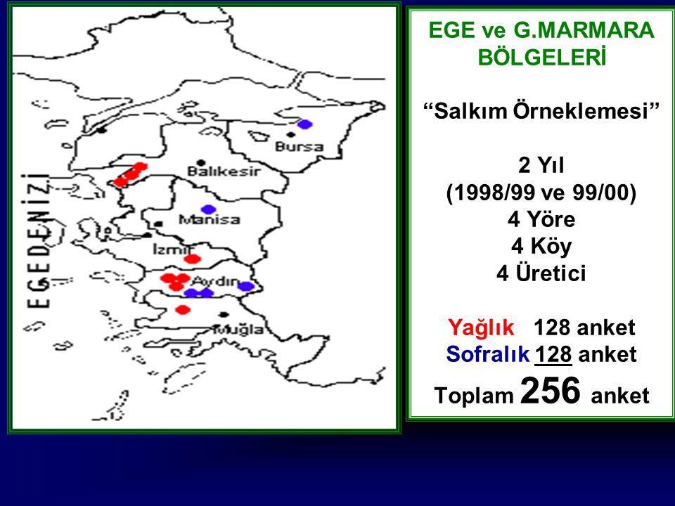 """EGE ve G.MARMARA BÖLGELERİ """"Salkım Örneklemesi"""" 2 Yıl (1998/99 ve 99/00) 4 Yöre 4 Köy 4 Üretici Yağlık 128 anket Sofralık 128 anket Toplam 256 anket"""