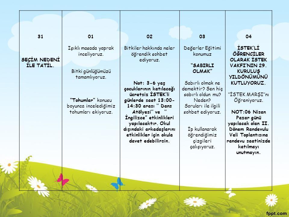 """31 SEÇİM NEDENİ İLE TATİL. 01 Işıklı masada yaprak inceliyoruz. Bitki günlüğümüzü tamamlıyoruz. """"Tohumlar"""" konusu boyunca incelediğimiz tohumları ekiy"""