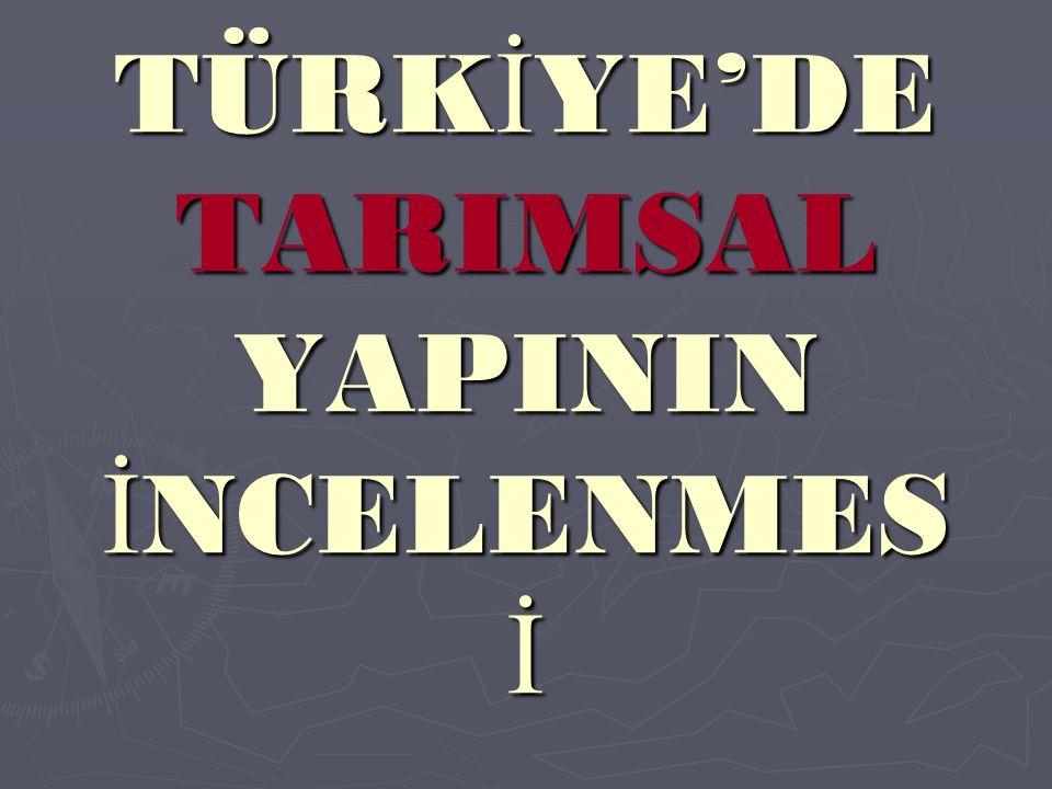 TÜRKİYE'DE TARIMSAL YAPININ İNCELENMES İ