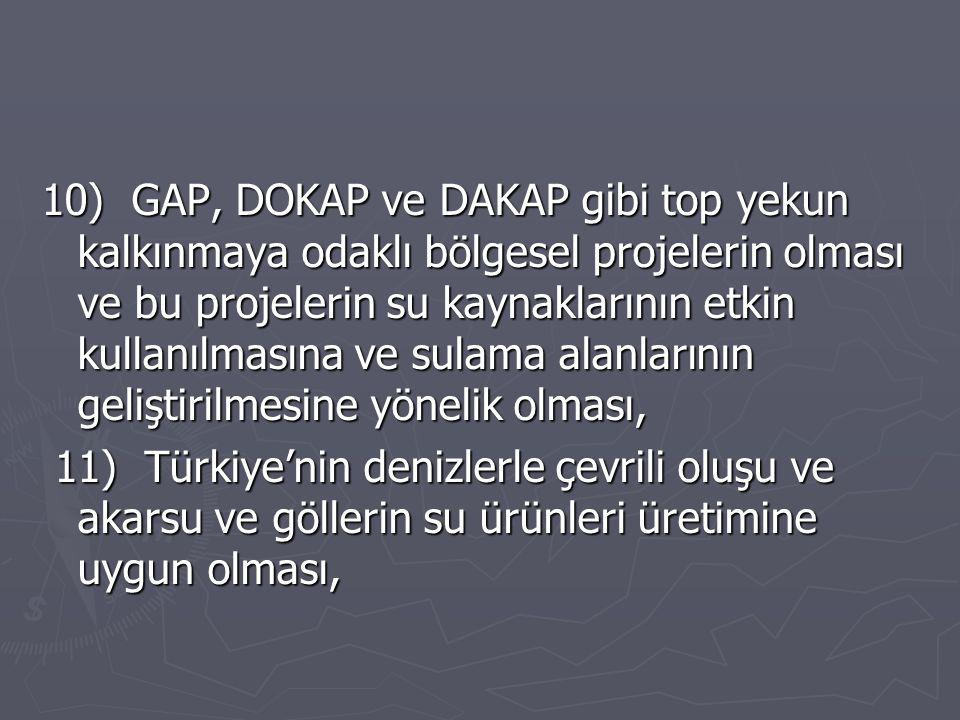 10) GAP, DOKAP ve DAKAP gibi top yekun kalkınmaya odaklı bölgesel projelerin olması ve bu projelerin su kaynaklarının etkin kullanılmasına ve sulama alanlarının geliştirilmesine yönelik olması, 11) Türkiye'nin denizlerle çevrili oluşu ve akarsu ve göllerin su ürünleri üretimine uygun olması, 11) Türkiye'nin denizlerle çevrili oluşu ve akarsu ve göllerin su ürünleri üretimine uygun olması,