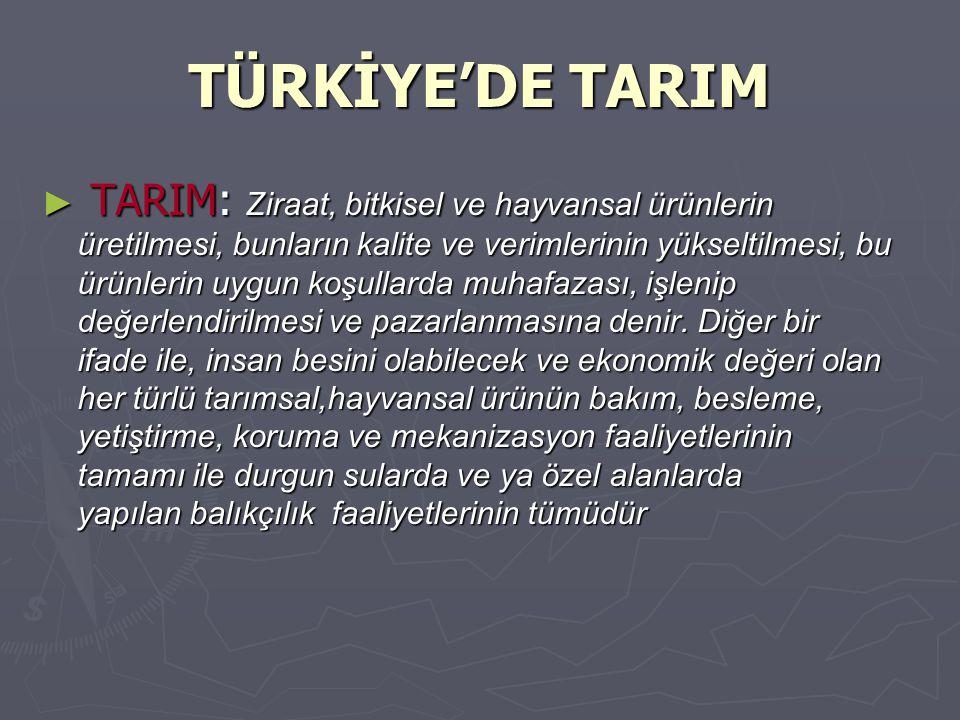 7) Tarım sanayinin gelişme potansiyelinin yüksekliği, 8) Tarımın, özel sektör yatırımlarına elverişli olması ve özel sektörün girişimcilik yeteneğinin yüksekliği, 8) Tarımın, özel sektör yatırımlarına elverişli olması ve özel sektörün girişimcilik yeteneğinin yüksekliği, 9) Binlerce yıl tarım yapılan Anadolu'da yerel bilgilerin zenginliği,