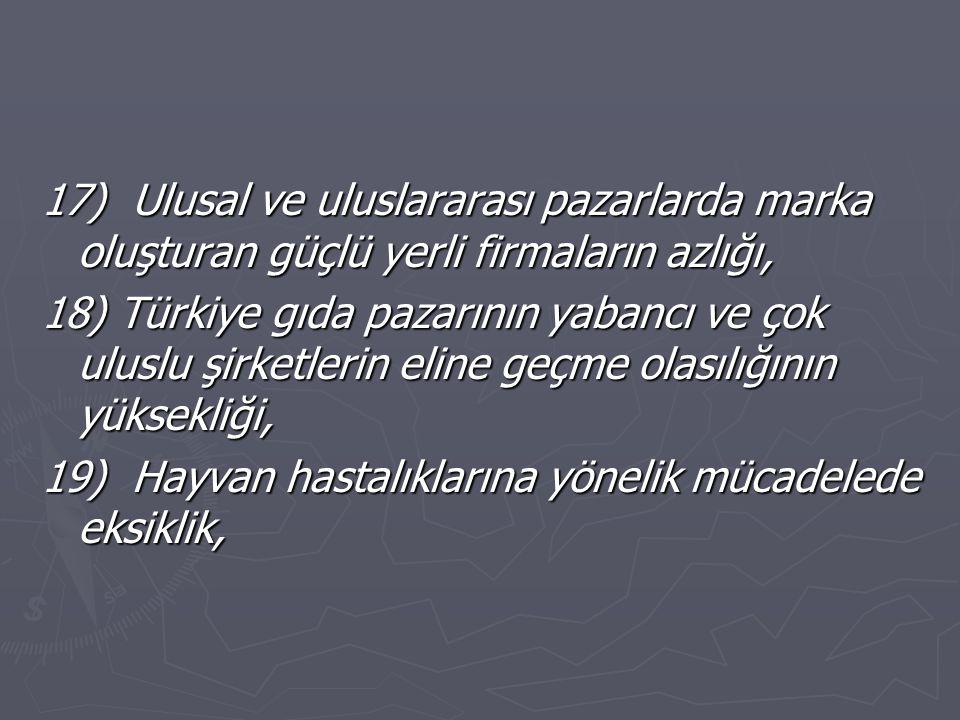 17) Ulusal ve uluslararası pazarlarda marka oluşturan güçlü yerli firmaların azlığı, 18) Türkiye gıda pazarının yabancı ve çok uluslu şirketlerin eline geçme olasılığının yüksekliği, 19) Hayvan hastalıklarına yönelik mücadelede eksiklik,