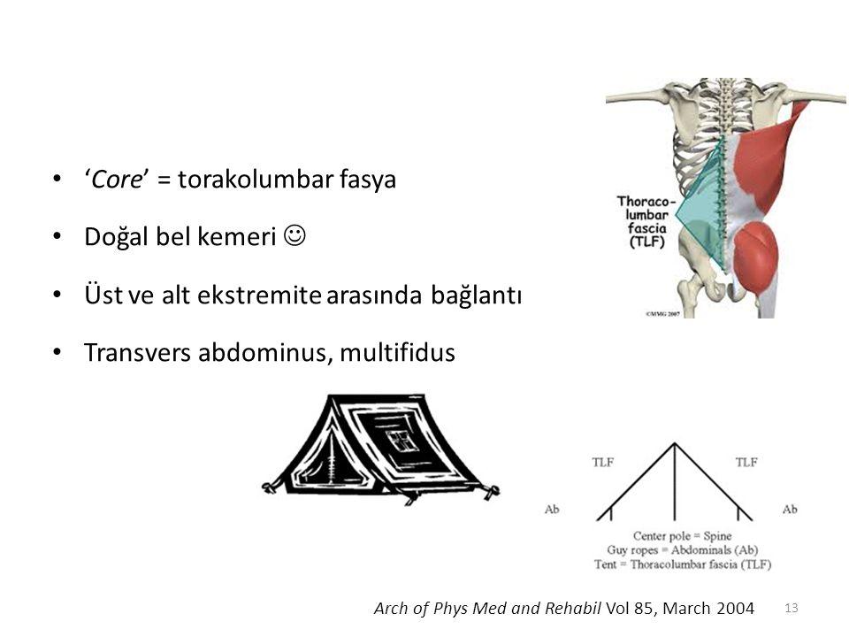 'Core' = torakolumbar fasya Doğal bel kemeri Üst ve alt ekstremite arasında bağlantı Transvers abdominus, multifidus Arch of Phys Med and Rehabil Vol