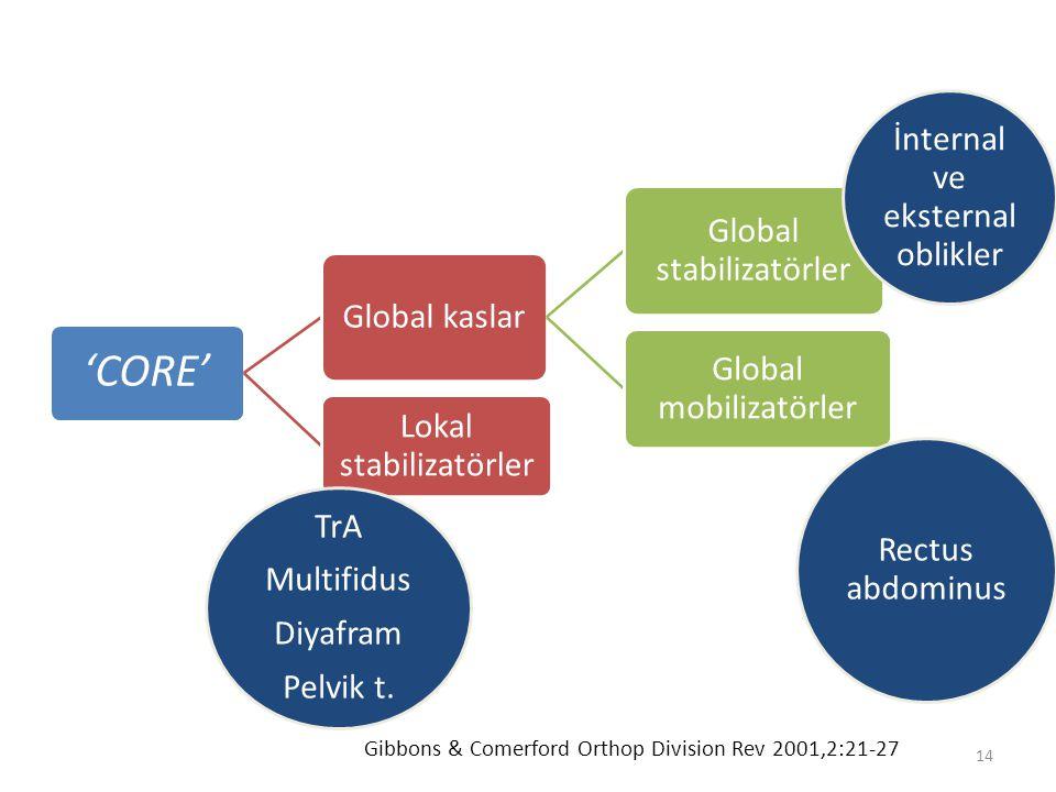14 'CORE' Global kaslar Global stabilizatörler Global mobilizatörler Lokal stabilizatörler Gibbons & Comerford Orthop Division Rev 2001,2:21-27 İntern