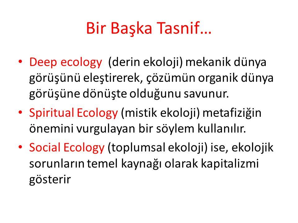 Bir Başka Tasnif… Deep ecology (derin ekoloji) mekanik dünya görüşünü eleştirerek, çözümün organik dünya görüşüne dönüşte olduğunu savunur. Spiritual