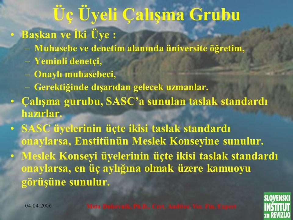 04.04.2006 Meta Duhovnik, Ph.D., Cert.Auditor, Ver.