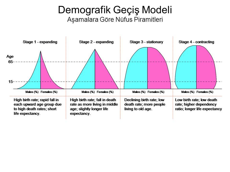 Demografik Geçiş Modeli Aşamalara Göre Nüfus Piramitleri