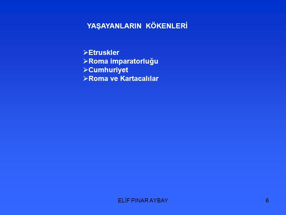 ELİF PINAR AYBAY17