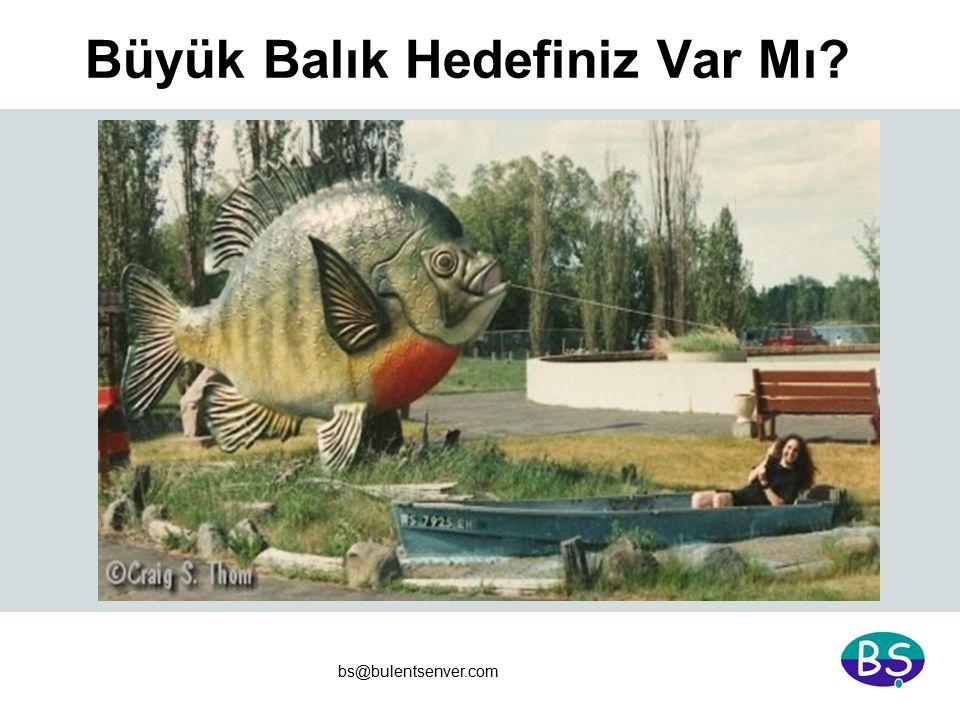 bs@bulentsenver.com Büyük Balık Hedefiniz Var Mı?