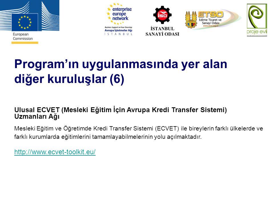 Program'ın uygulanmasında yer alan diğer kuruluşlar (6) Ulusal ECVET (Mesleki Eğitim İçin Avrupa Kredi Transfer Sistemi) Uzmanları Ağı Mesleki Eğitim