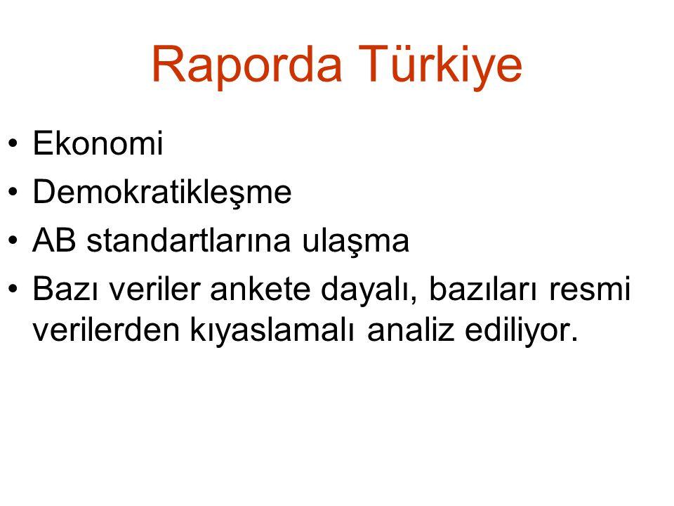 Raporda Türkiye Ekonomi Demokratikleşme AB standartlarına ulaşma Bazı veriler ankete dayalı, bazıları resmi verilerden kıyaslamalı analiz ediliyor.