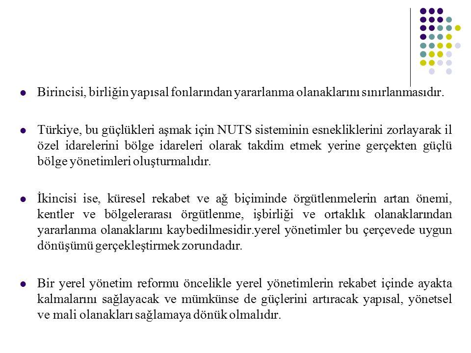 Birincisi, birliğin yapısal fonlarından yararlanma olanaklarını sınırlanmasıdır. Türkiye, bu güçlükleri aşmak için NUTS sisteminin esnekliklerini zorl