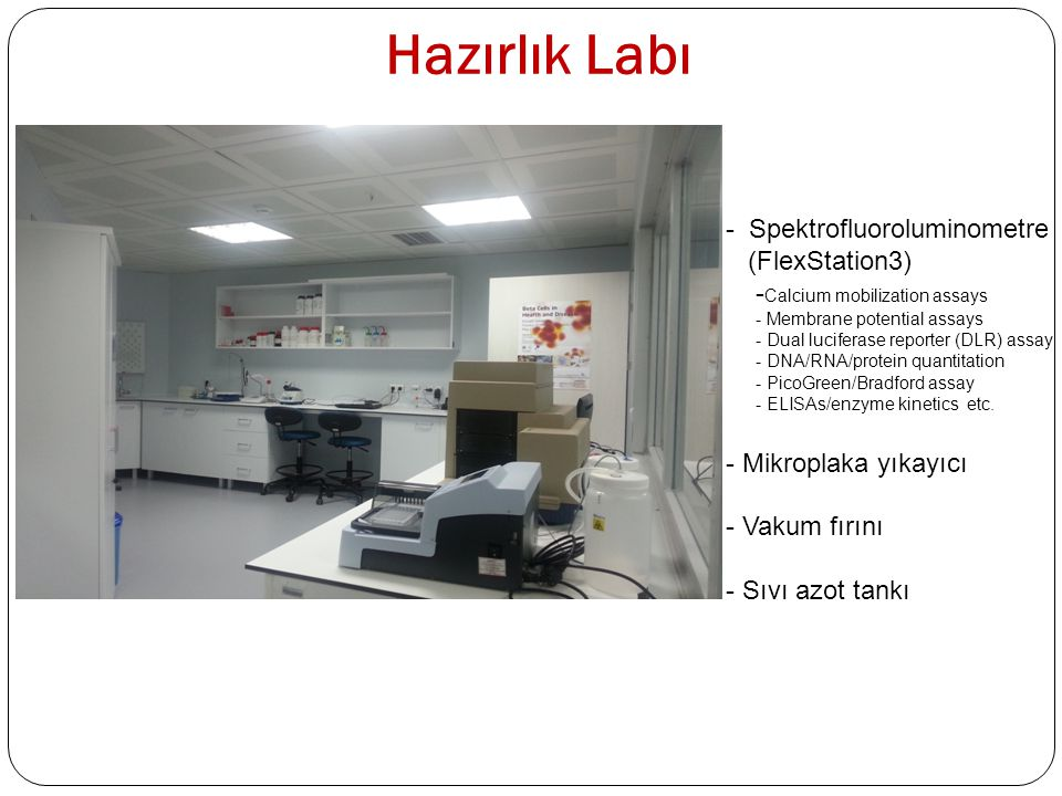 Hazırlık Labı - Spektrofluoroluminometre (FlexStation3) - Calcium mobilization assays - Membrane potential assays - Dual luciferase reporter (DLR) ass
