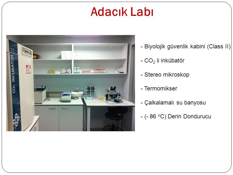 Adacık Labı - Biyolojik güvenlik kabini (Class II) - CO 2 li inkübatör - Stereo mikroskop - Termomikser - Çalkalamalı su banyosu - (- 86 o C) Derin Do