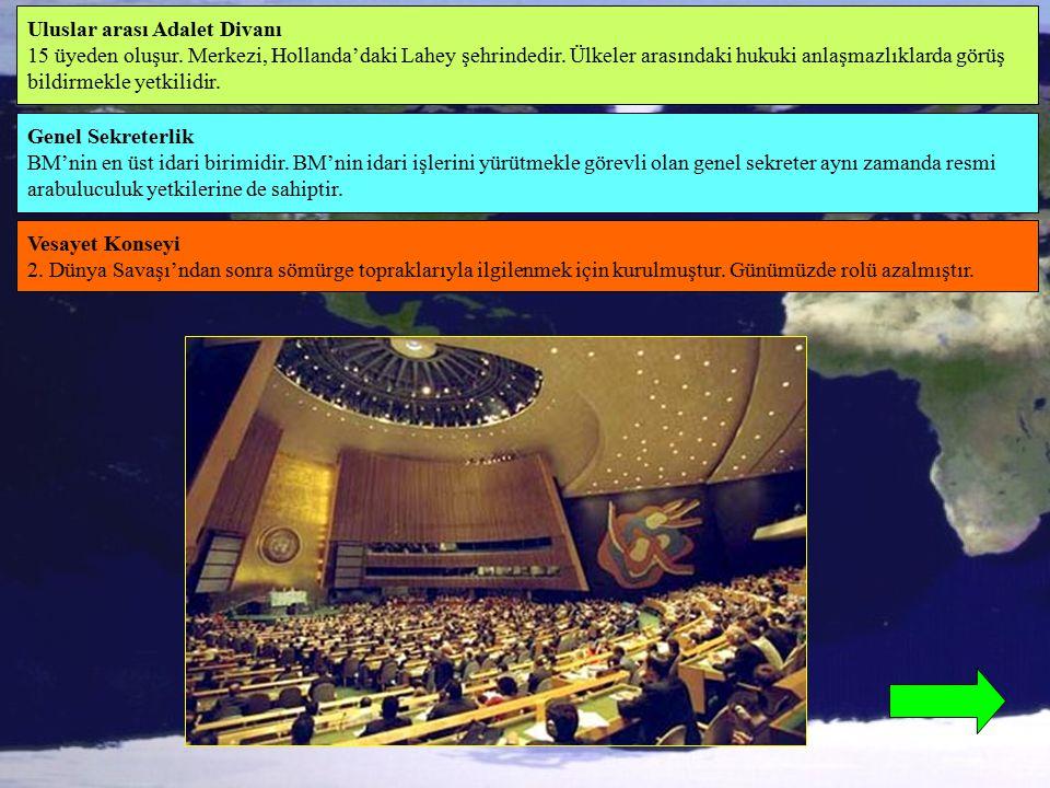 BM'nin, uluslar arası sorunlarla ilgilenmek üzere Genel Kurula yardımcı olmak için kurulmuş birçok yardımcı organı bulunmaktadır.