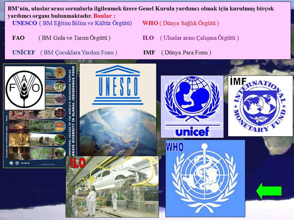 BM'nin, uluslar arası sorunlarla ilgilenmek üzere Genel Kurula yardımcı olmak için kurulmuş birçok yardımcı organı bulunmaktadır. Bunlar : UNESCO ( BM