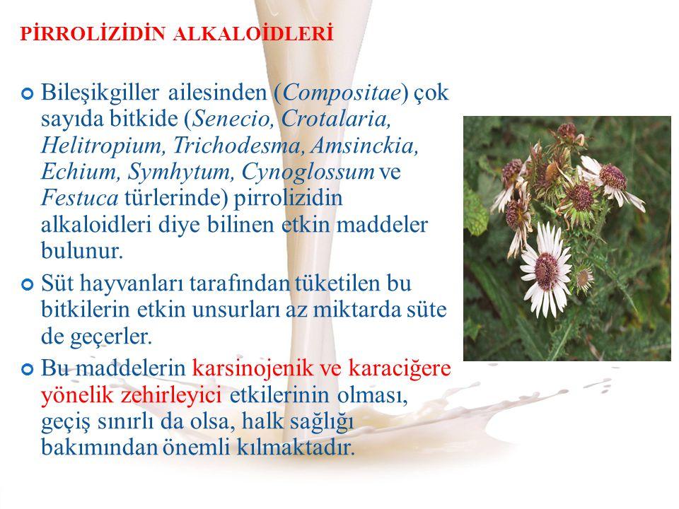 PİRROLİZİDİN ALKALOİDLERİ Bileşikgiller ailesinden (Compositae) çok sayıda bitkide (Senecio, Crotalaria, Helitropium, Trichodesma, Amsinckia, Echium,