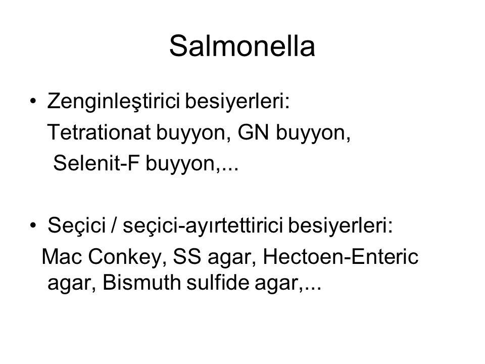 Salmonella Zenginleştirici besiyerleri: Tetrationat buyyon, GN buyyon, Selenit-F buyyon,... Seçici / seçici-ayırtettirici besiyerleri: Mac Conkey, SS