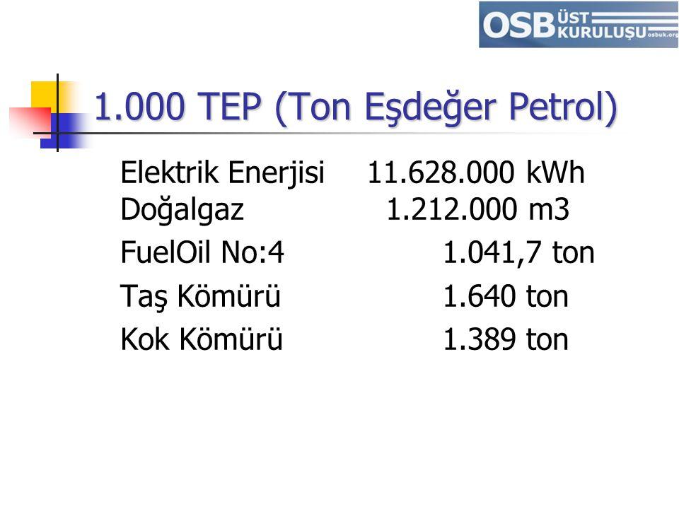 1.000 TEP (Ton Eşdeğer Petrol) Elektrik Enerjisi 11.628.000 kWh Doğalgaz 1.212.000 m3 FuelOil No:4 1.041,7 ton Taş Kömürü 1.640 ton Kok Kömürü 1.389 t