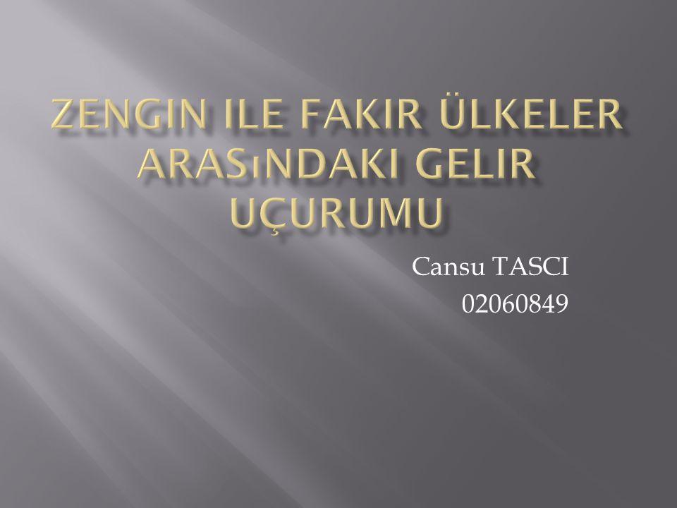 Cansu TASCI 02060849