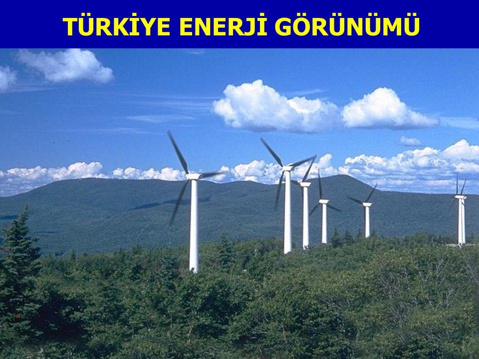 TÜRKİYE ENERJİ GÖRÜNÜMÜ