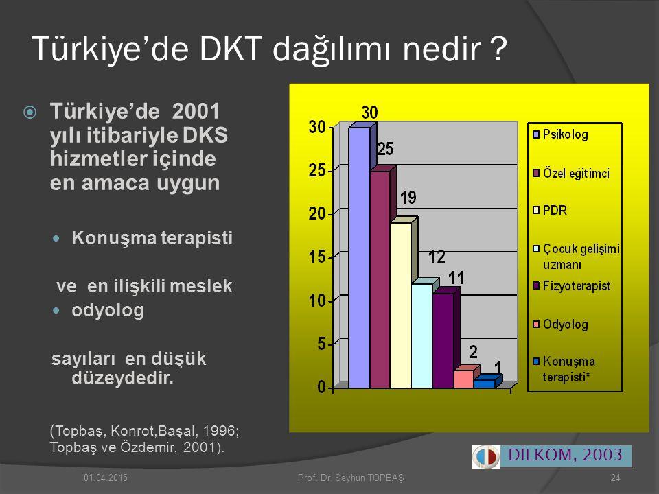 Türkiye'de DKT dağılımı nedir ?  Türkiye'de 2001 yılı itibariyle DKS hizmetler içinde en amaca uygun Konuşma terapisti ve en ilişkili meslek odyolog