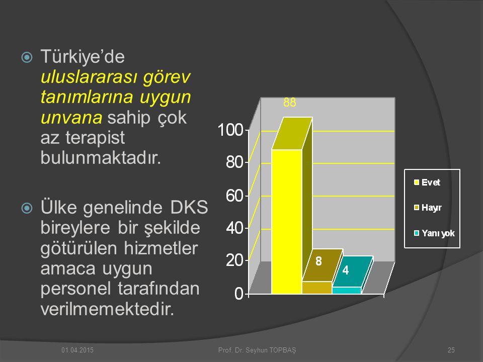  Türkiye'de uluslararası görev tanımlarına uygun unvana sahip çok az terapist bulunmaktadır.  Ülke genelinde DKS bireylere bir şekilde götürülen hiz