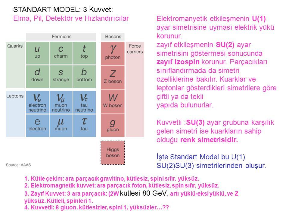 STANDART MODEL: 3 Kuvvet: Elma, Pil, Detektör ve Hızlandırıcılar 1. Kütle çekim: ara parçacık gravitino, kütlesiz, spini sıfır. yüksüz. 2. Elektromagn