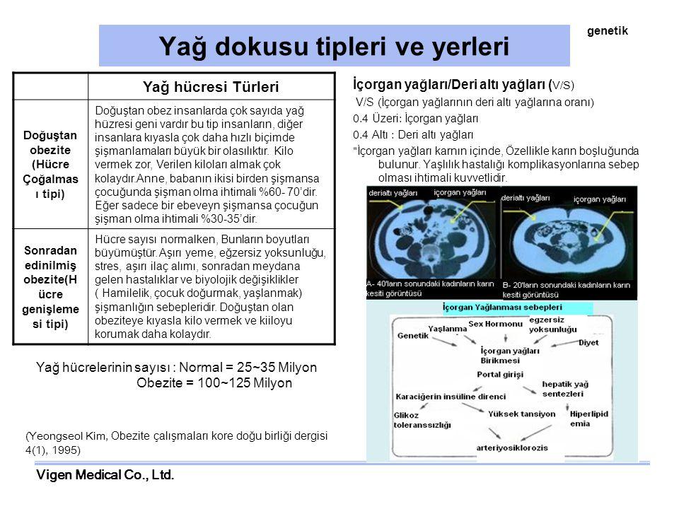 Vigen Medical Co., Ltd. Yağ dokusu tipleri ve yerleri İçorgan yağları/Deri altı yağları ( V/S) V/S (İçorgan yağlarının deri altı yağlarına oranı) 0.4
