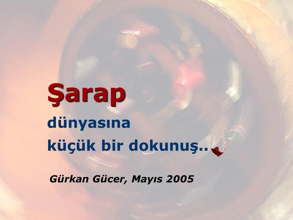 Şarap Şarap dünyasına küçük bir dokunuş.. Gürkan Gücer, Mayıs 2005