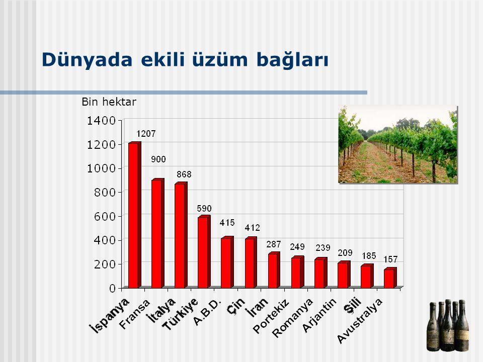Dünyada ekili üzüm bağları Bin hektar