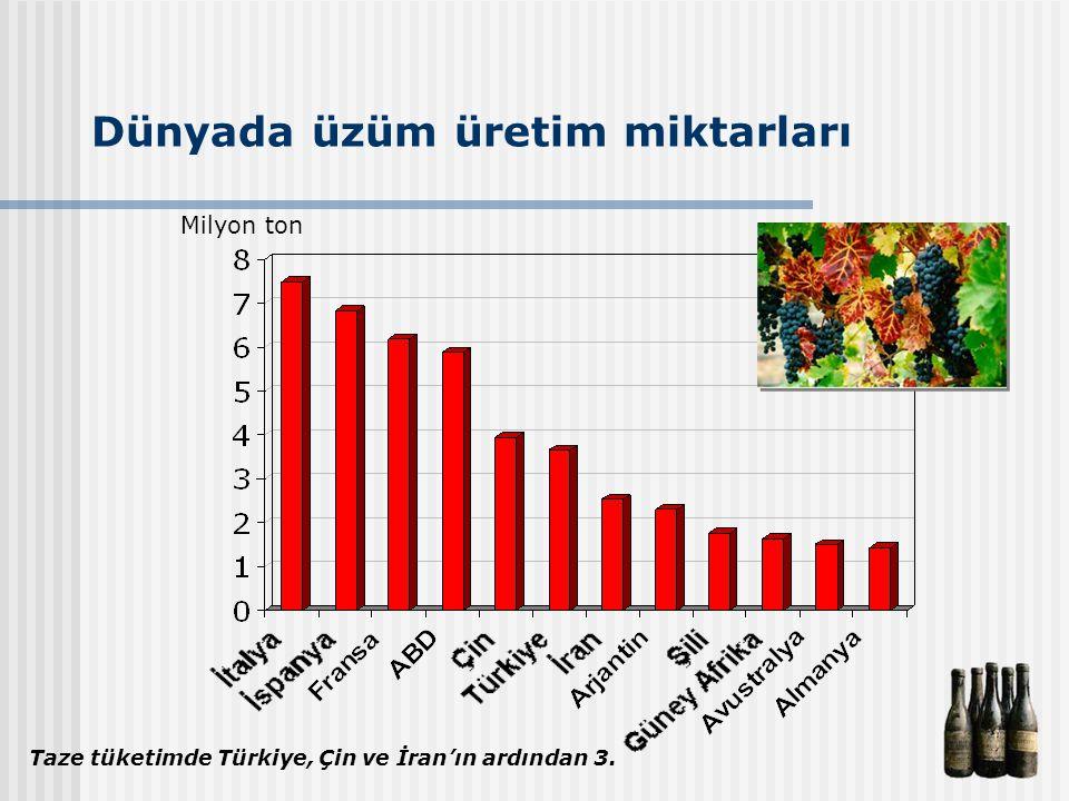 Dünyada üzüm üretim miktarları Milyon ton Taze tüketimde Türkiye, Çin ve İran'ın ardından 3.