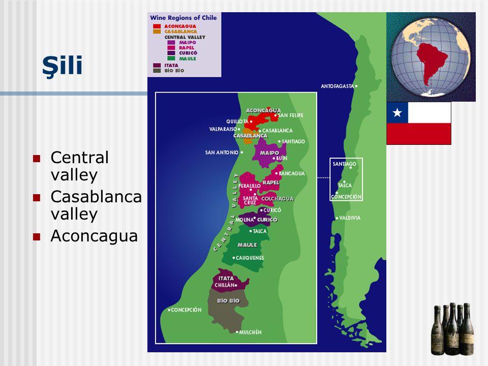 Şili Central valley Casablanca valley Aconcagua