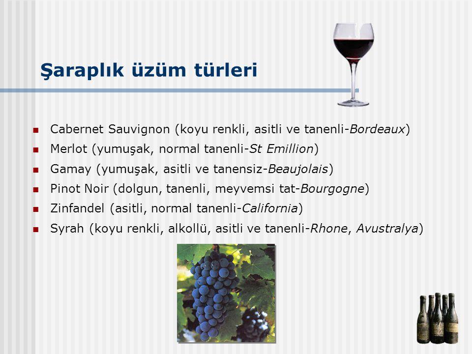 Şaraplık üzüm türleri Cabernet Sauvignon (koyu renkli, asitli ve tanenli-Bordeaux) Merlot (yumuşak, normal tanenli-St Emillion) Gamay (yumuşak, asitli