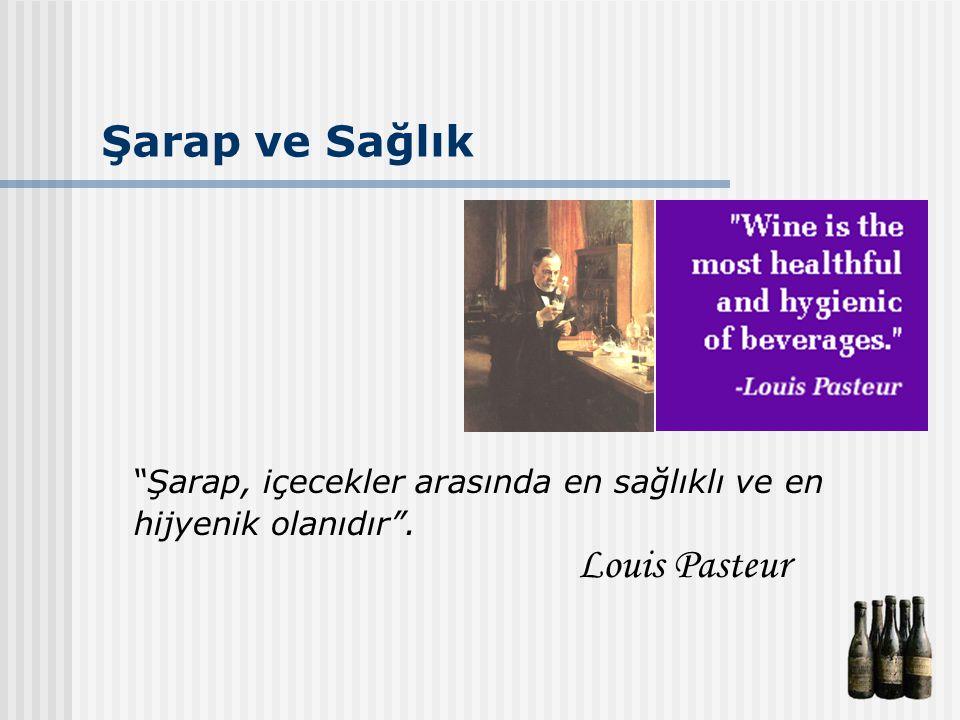 """Şarap ve Sağlık """"Şarap, içecekler arasında en sağlıklı ve en hijyenik olanıdır"""". Louis Pasteur"""
