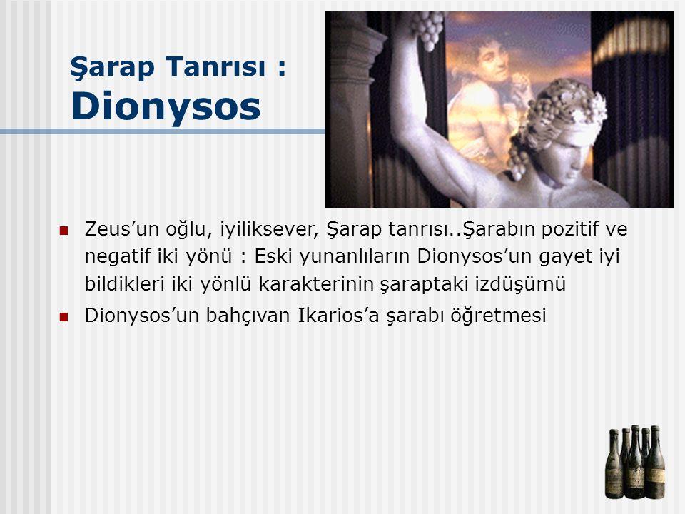 Şarap Tanrısı : Dionysos Zeus'un oğlu, iyiliksever, Şarap tanrısı..Şarabın pozitif ve negatif iki yönü : Eski yunanlıların Dionysos'un gayet iyi bildi
