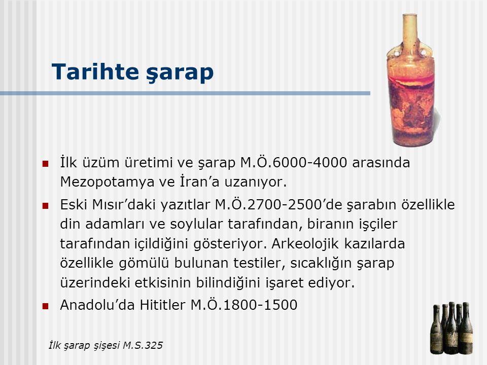 Tarihte şarap İlk üzüm üretimi ve şarap M.Ö.6000-4000 arasında Mezopotamya ve İran'a uzanıyor. Eski Mısır'daki yazıtlar M.Ö.2700-2500'de şarabın özell